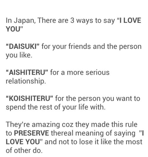how to say �i love you� in japanese living with my low